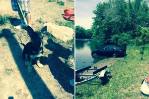 Puppy drives car into pond